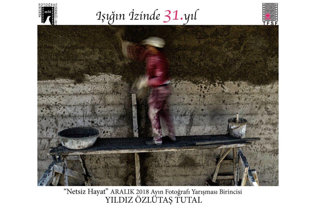 mfd_aralik_netsiz_hayat (1)